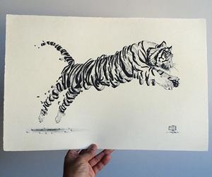 drawing, art, and tiger image