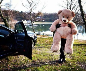 teddy, love, and car image