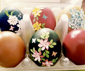 cool, beautiful, and eggs image
