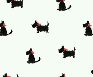 background, dog, and wallpaper image