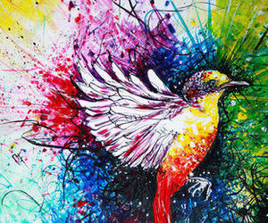 bird, art, and colorful image