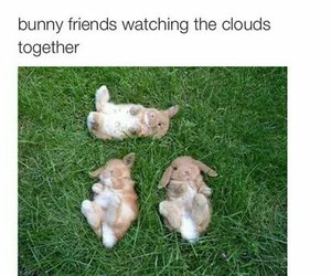 bunny, clouds, and cute image