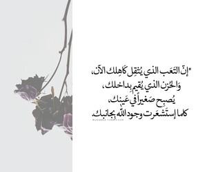 صور and حكم image