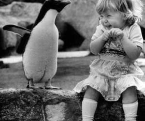 cute, penguin, and black and white image