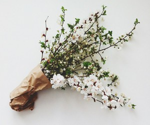 flowers, white, and vintage image
