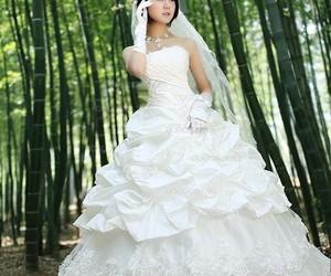 beauty, dress, and lace image