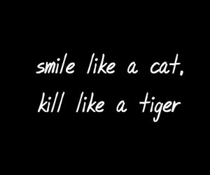 cat, kill, and smile image