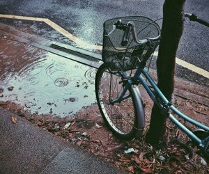 love, vintage, and bike image