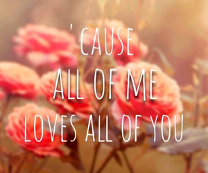 love, you, and all of me image