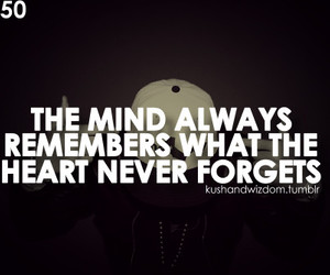 mind, quote, and forget image