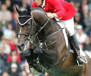 show jumping, horse, and hickstead image