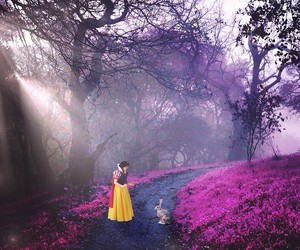 forest and snow white image