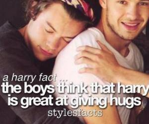 Harry Styles, one direction, and fact image