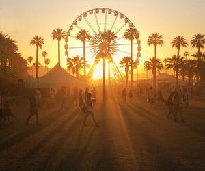 summer, sunset, and coachella image