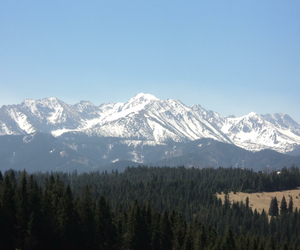 mountains, polska, and zakopane image
