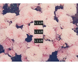 flowers, liar, and pink image