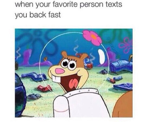 funny, text, and spongebob image