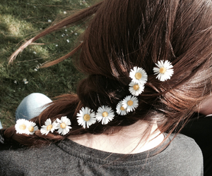 hair, brown, and flower image