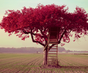 pink, tree, and tree house image