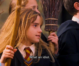 harry potter, idiot, and hermione granger image