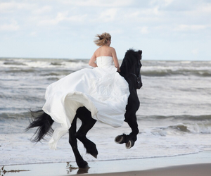 beautiful, bride, and horse image