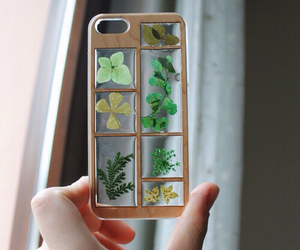 case, phone, and plant image