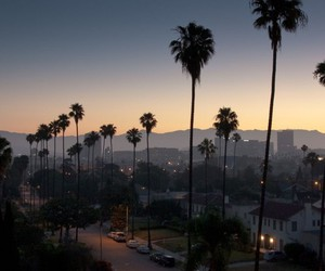 sunset, california, and palm trees image