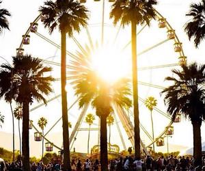 coachella, palms, and sun image