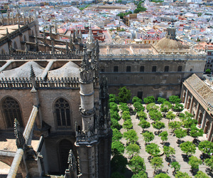 garden, roofs, and sevilla image