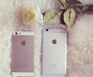 iphone, rose, and white image