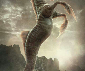 mythical creature and hippocampus image