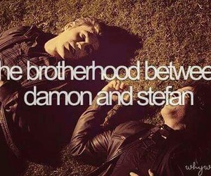 vampire, tvd, and brothers image