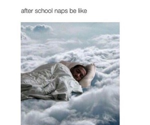 funny, nap, and school image