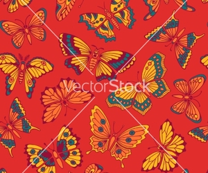 animal, butterfly, and pattern image