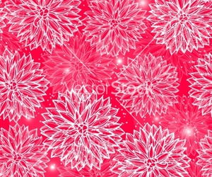 background, dahlia, and floral image