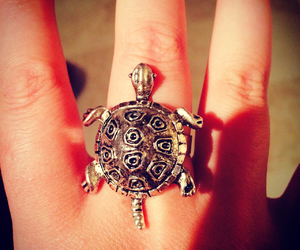 ring, turtle, and silver image