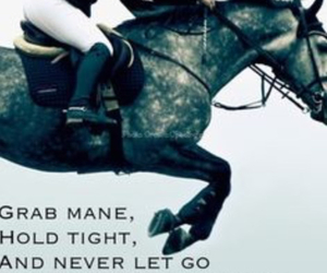 horse, horses, and quote image