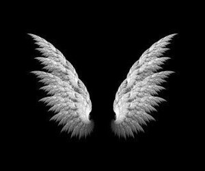 wings, black, and wallpaper image