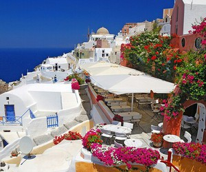 Greece, santorini, and flowers image