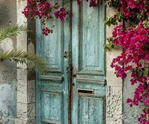 flowers, door, and vintage image