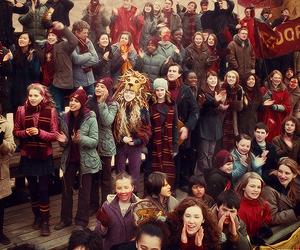 harry potter, gryffindor, and hermione granger image