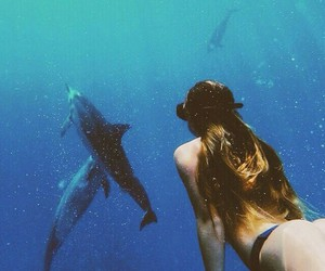 girl, dolphin, and summer image