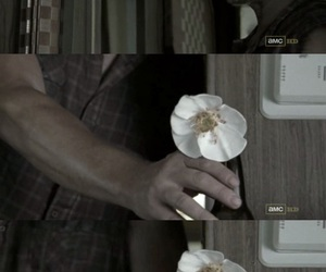 the walking dead, daryl dixon, and cherokee rose image