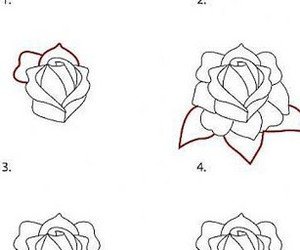 how to draw rose image