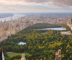 new york, Central Park, and manhattan image
