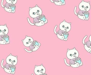 background, cat, and pink image