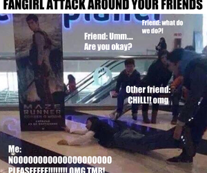 funny, OMG, and fangirl image