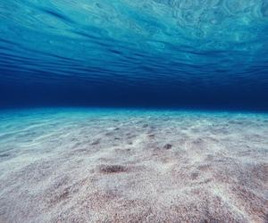 bikini, live, and hawaii image