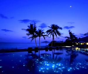 blue, reflection, and night image