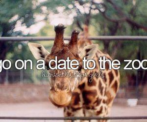 date, zoo, and bucket list image